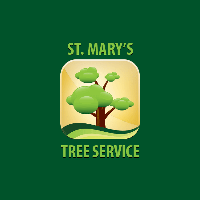 saint-marys-tree-service